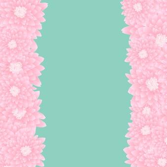 Pink chrysanthemum border
