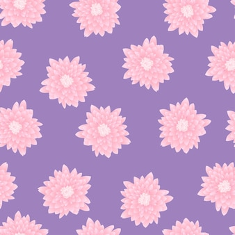 Pink chrysanthemum on purple background
