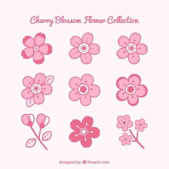 Розовый коллекция вишни