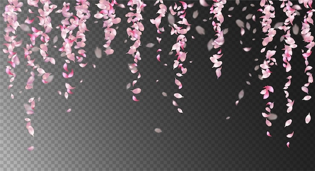 Розовые падающие лепестки с размытыми расфокусированными прозрачными деталями