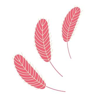 Розовые перья на белом фоне