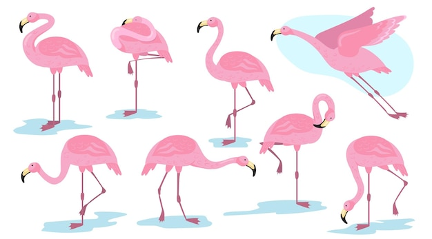 다른 포즈 평면 세트에 핑크 플라밍고 새