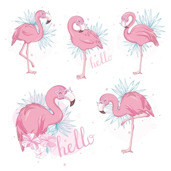 Pink flamingo cartoon flat set.