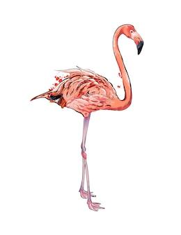 Розовый фламинго из всплеска акварели
