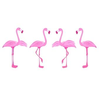 플라밍고 이국적인 새와 핑크 플라밍고 세트