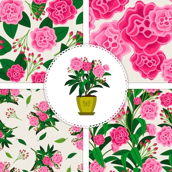 Pink flower in pot and four floral patterns set