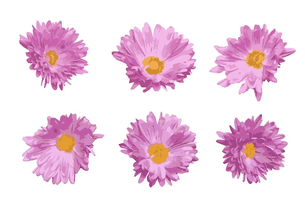 핑크 꽃 장식 요소