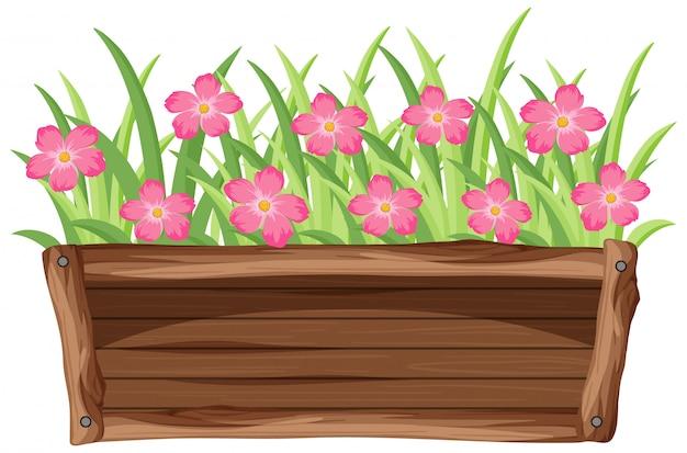 白い背景の上の木製のバケツにピンクの花