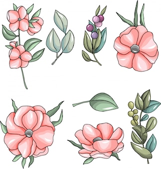 Pink flowers and leaves illustration