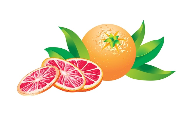 Pink grapefruits with leafs isolated