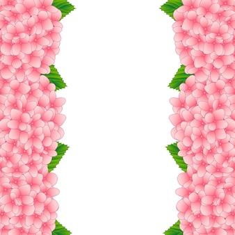 ピンクの紫陽花花の罫線
