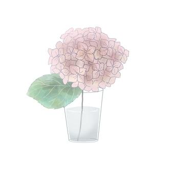 花瓶にピンクのアジサイ。白い背景に。
