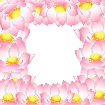 Pink indian lotus border