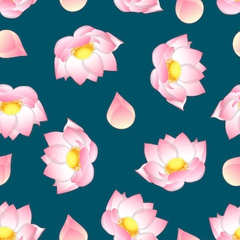 Pink indian lotus on green teal background
