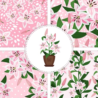 Pink lily in flower pot icon and patterns collection
