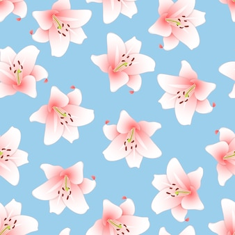Pink lily on light blue background