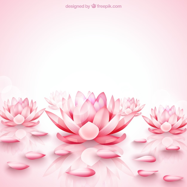 lotus vectors photos and psd files free download rh freepik com lotus factory lotus factory