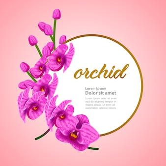 ピンクの蘭のフレーム。