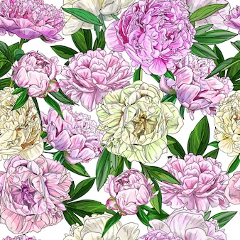 Pink peonies, seamless patter, full color sketch