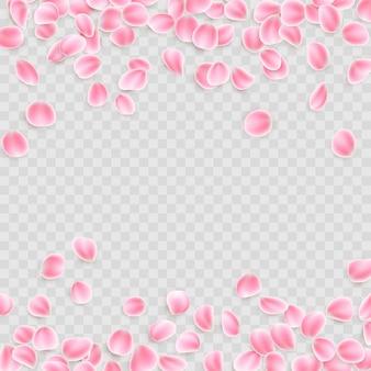 Розовые лепестки на прозрачном фоне.