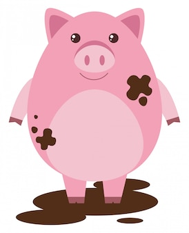 Pink pig in muddy puddle