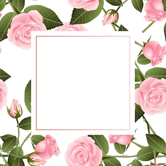 Pink rose on white banner card