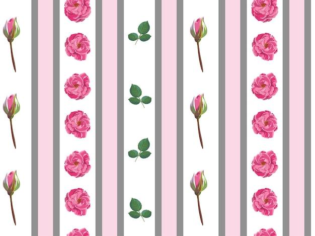 분홍색 장미와 줄무늬, 꽃과 새싹이 피는 벽지. 부드럽고 우아한 식물, 포장 또는 섬유 배경. 정원 또는 꽃집. 원활한 패턴, 평면 스타일의 벡터