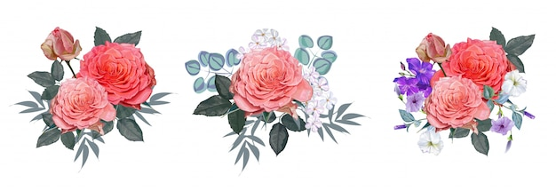 Pink roses bouquet vector illustration