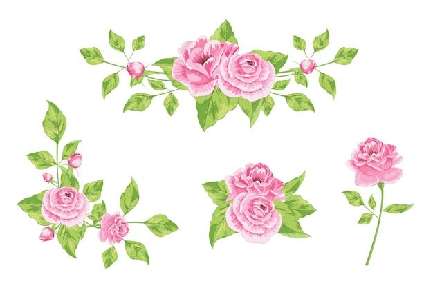 Коллекция розовых роз с различным расположением