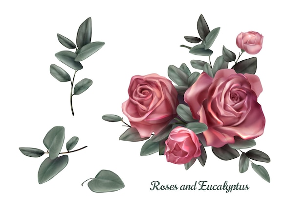 Pink roses and green leave elements set