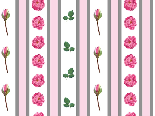 Pink roses and stripes, wallpaper with blooming flowers and buds. tender and elegant flora, wrapping or background for textile. garden or florist shop. seamless pattern, vector in flat style