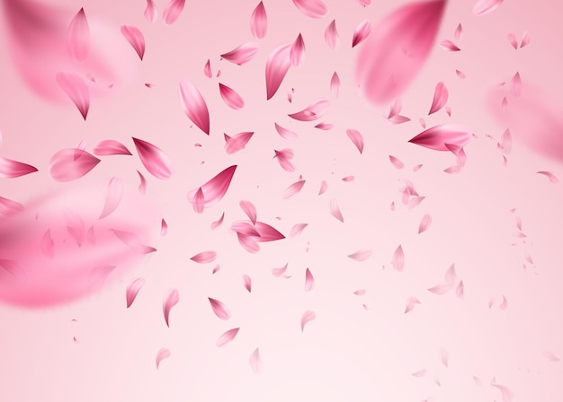 Pink sakura falling petals background.  illustration