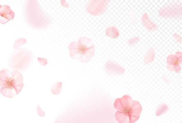 핑크 사쿠라 떨어지는 꽃잎 벡터 배경. 섬유 디자인, 벽지, 포장, 표지, 배너, 전단지, 바우처를 위한 투명한 배경에 벚꽃을 날리는 현실적인 봄 디자인
