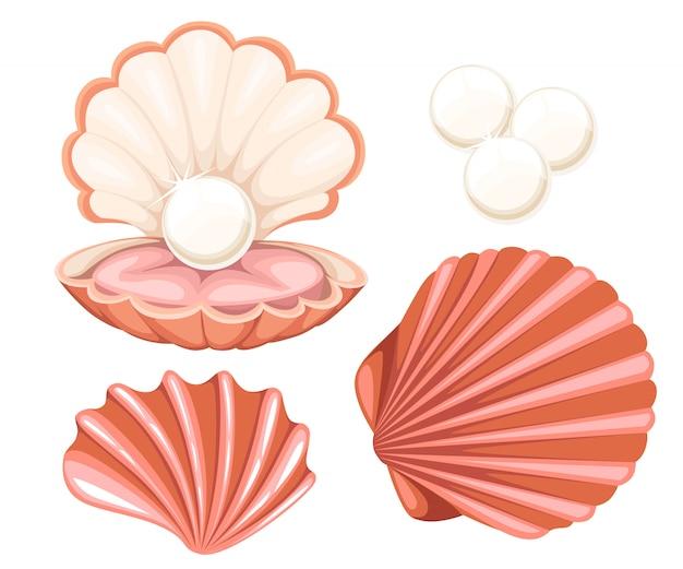 パールとピンクの貝殻。白い背景の上の図。