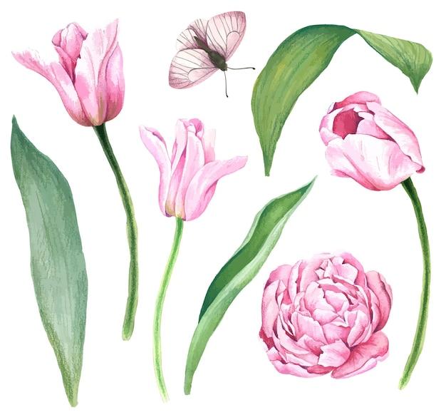 明るい水彩画の葉を持つピンクのチューリップ