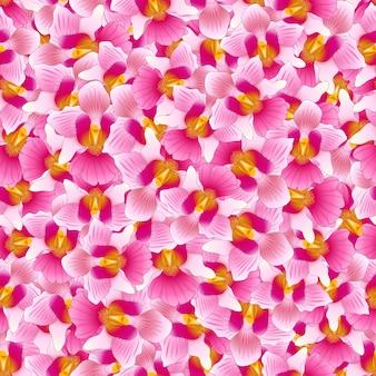 Розовый vanda miss joaquim orchid бесшовные фон.