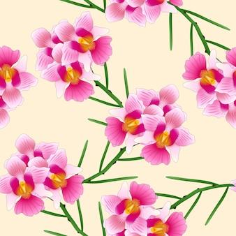 Pink vanda miss joaquim orchid