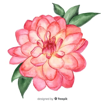 Pink watercolor coral flower