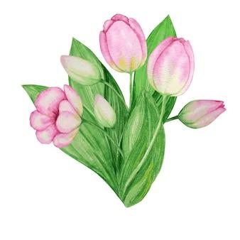 분홍색 노란색 튤립 꽃다발 손으로 그린 수채화 식물 그림. 아름다운 봄 꽃.