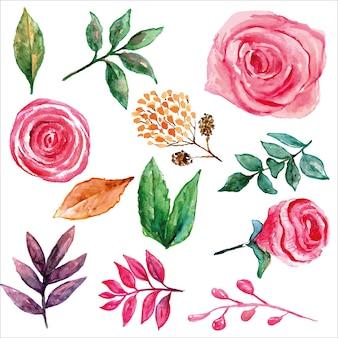 Розоватый бутон розы с зелеными желтыми и розовыми листьями набор акварели