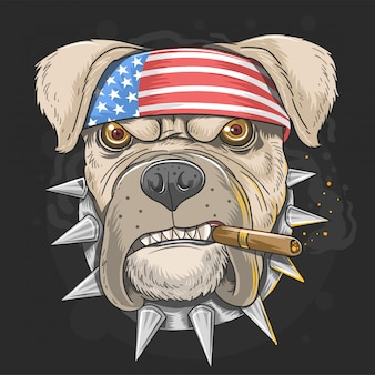 Pit bull dog american punk head