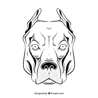 Pitbull head drawing icon vector
