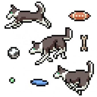 Pixel art isolated dog playing
