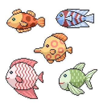 Пиксель арт разноцветных рыб