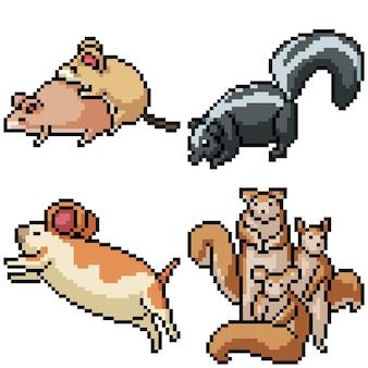 Пиксель арт набор изолированных грызун животных