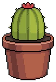 白い背景の上のポットビットゲームアイテムのピクセルアートジューシーなサボテン