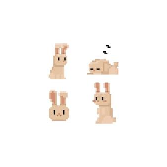 Pixel cute brown rabbit set