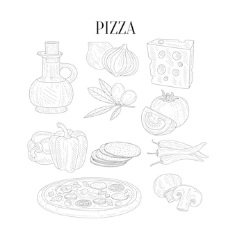 Pizza ingredients isolated hand drawn realistic sketches