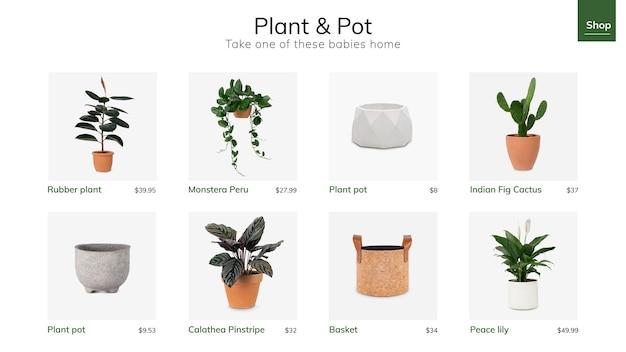 소셜 미디어 광고를 위한 식물 및 냄비 템플릿 벡터