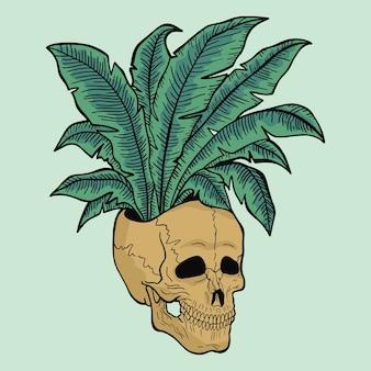 植物と頭蓋骨